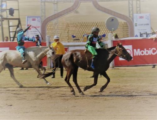 Hästkapplöpning i Mongoliet