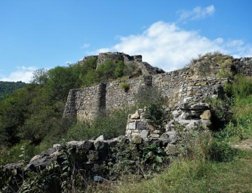 Dmanisi – i historiens korsväg