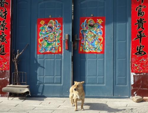 På spaning i Beijing – intryck och iakttagelser