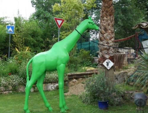 Hos Docteur Piscine – en busig trädgård