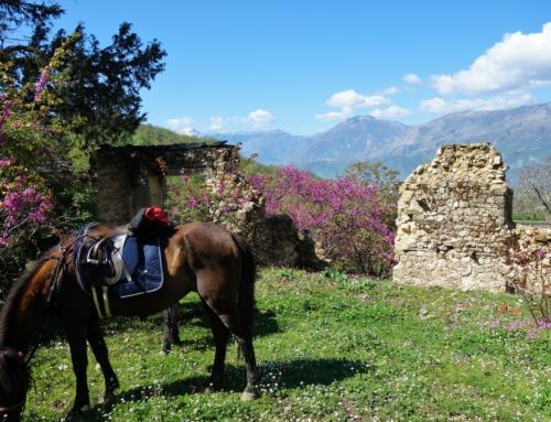 Till häst i Albanien – del 1
